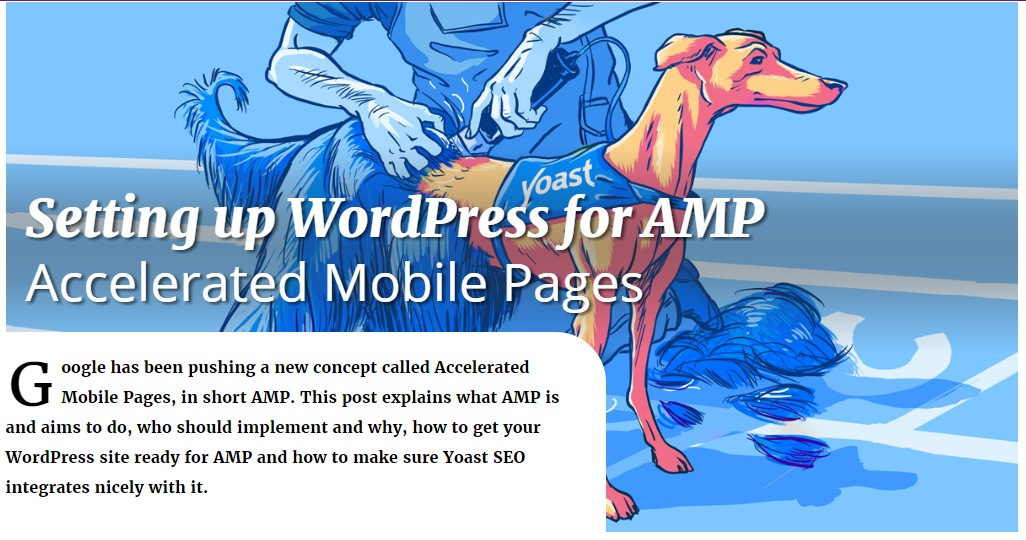 Setting up wordpress for AMP accelerated mobile pages